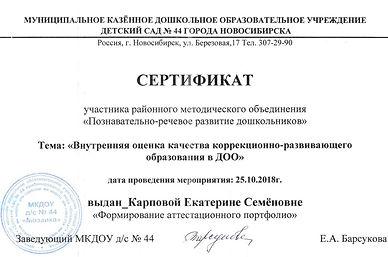 Сертификат МО район 2018.jpeg