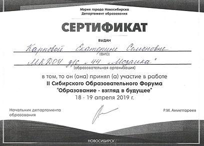 Сертификат депортамент образования 2019.
