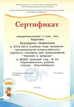 Сертификат организатора ЧИП 2015.jpeg