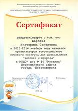 сертификат организатора ЧИП 2016.jpeg