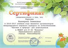 сертификат организатора ЧИП 2017.jpeg