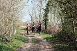 Les chemins de promenade, dans le parc privé du château et dans les champs alentours