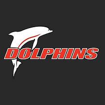 Redcliffe Leagues Logo.jpg