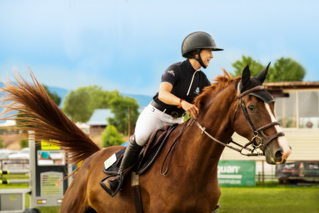 Horses-24.jpg