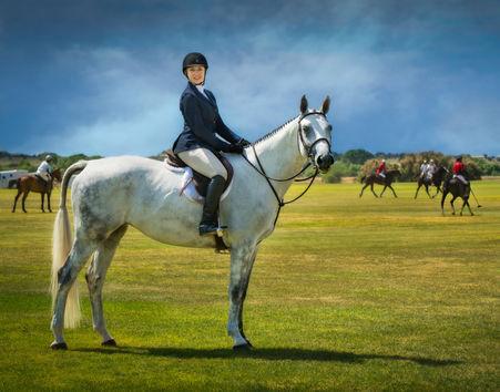 Equestrian-10.jpg