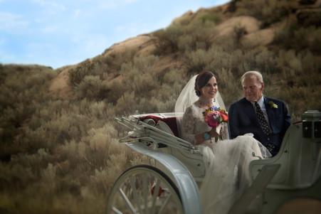 Weddings and Engagments-6.jpg