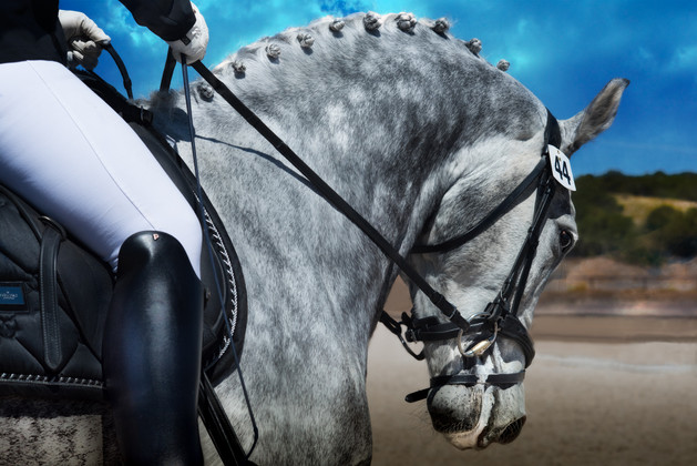 ∂ances with Horses '18-3.jpg