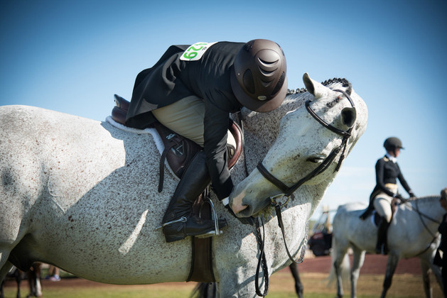 Hipico-Horse-Show-5.jpg