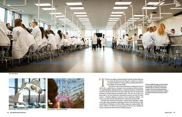Editorial-44.jpg