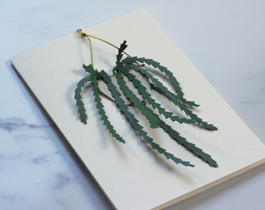 Rhipsalis Houseplant Papercut