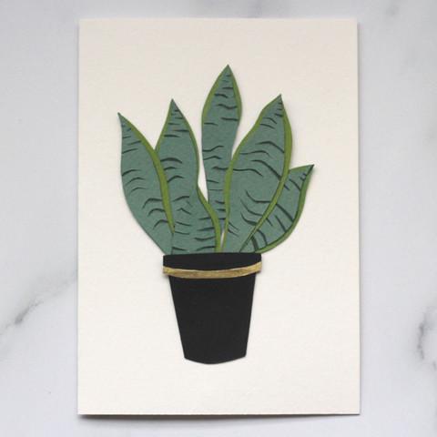 Sanseveria Houseplant Papercut