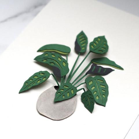 Calathea Houseplant Papercut