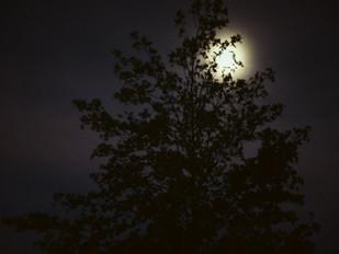 絵本の世界のような月