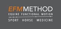 Logo EFM_tagline_diap.png