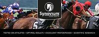 logo synovium.jpg