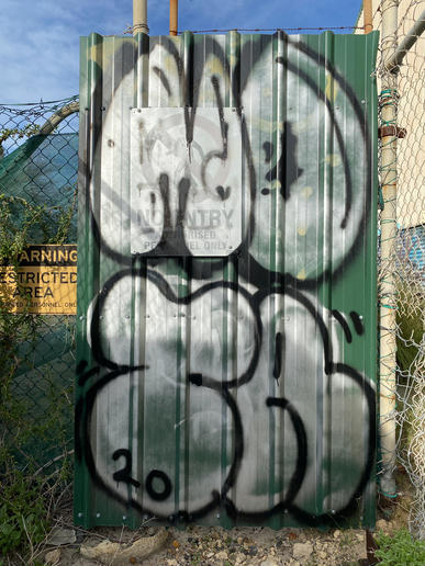 02 - Graff in a waste lot structure on Port Beach Road