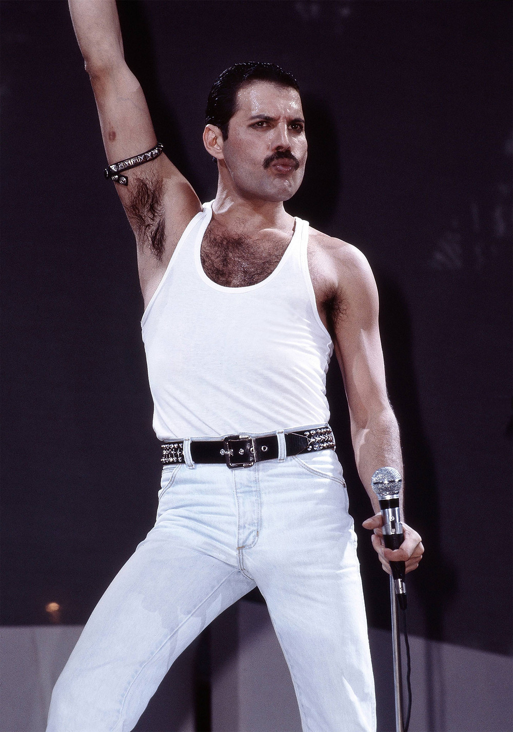 The legendary Freddie Mercury, British singer, songwriter, record producer, and lead vocalist of the rock band Queen. Regarded one of the greatest lead singers in history