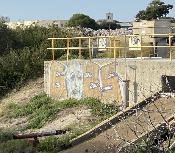 01 - Graff in a waste lot structure on Port Beach Road