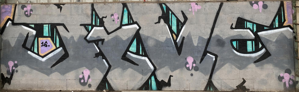 13 - A graffiti tag at the abandoned Fremantle Freight & Storage Warehouse - 02 April 2021