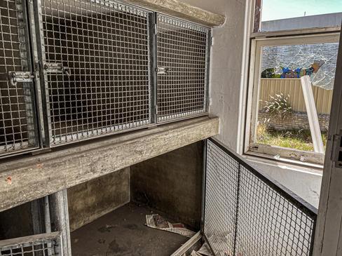02 - High Street Fremantle Veterinary Ho