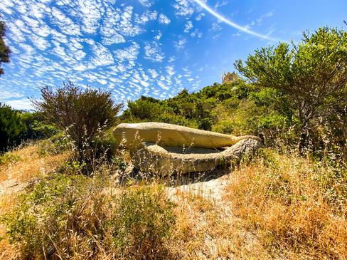 14 - Atlantis Marine Park