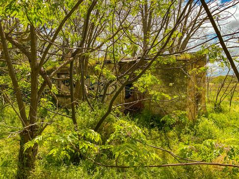 01 - Frederick Postan's Cottage, Hope Va