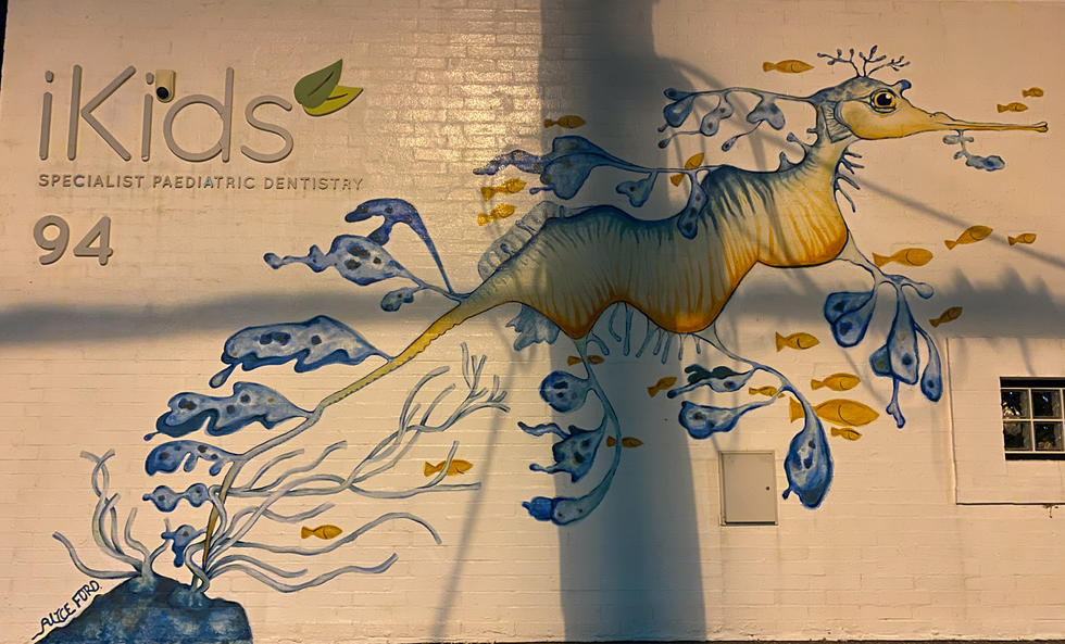 02 - Alice Ford's painted Ethyl the Sea dragon on the front wall of iKids dental practice