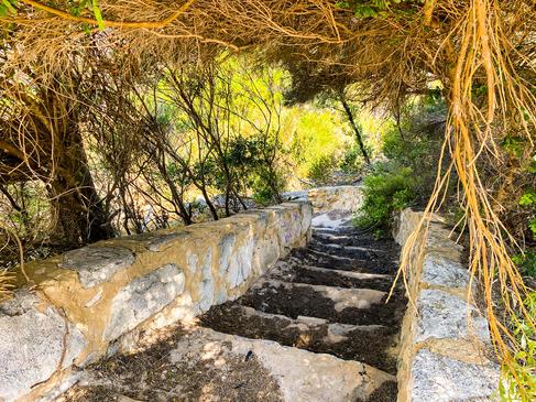 13 - Atlantis Marine Park