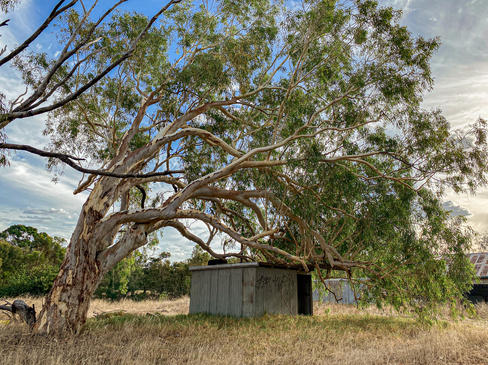 14 - Byford Abandoned Sheds
