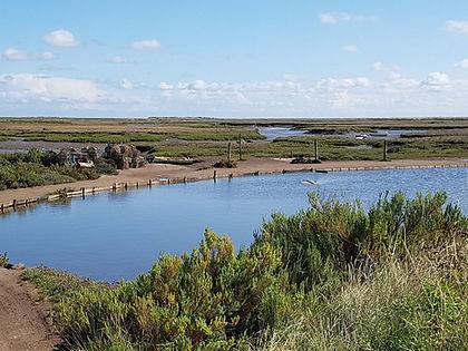 sea water storage pond