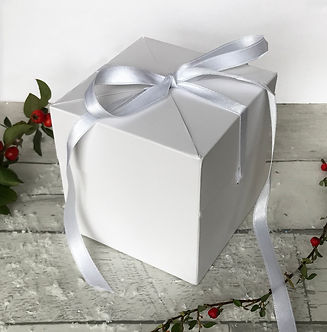 bauble white box 2.jpg