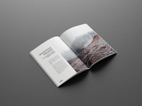 VC.PAGE copy.jpg