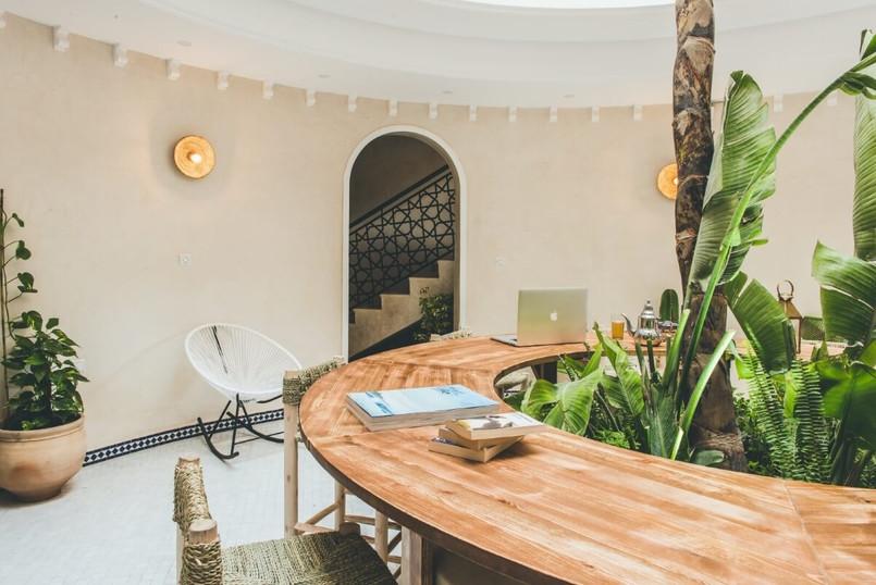 plants eco friendly morocco hotel
