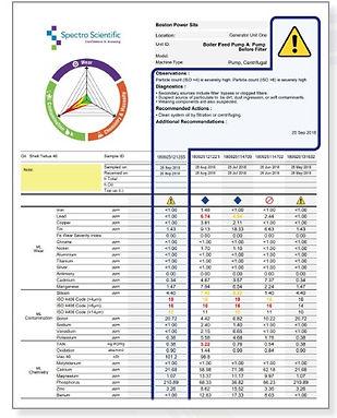 TruVu 360 Sample Report.jpg