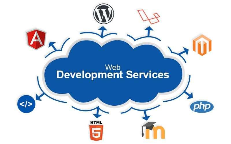 WEBSITE Development & Consultancy