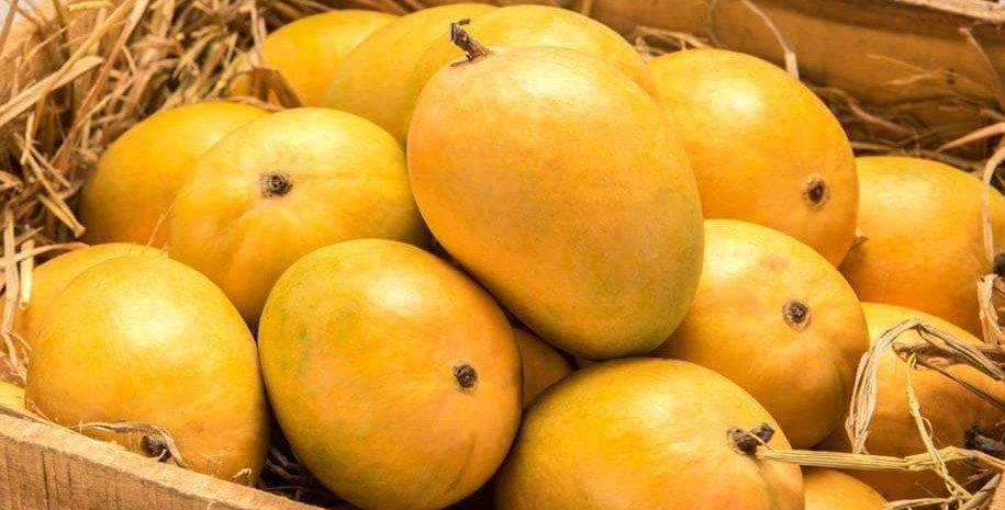 Mango Chosa