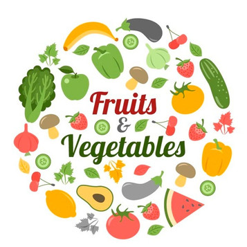 collection-healthy-food_23-2147556508_ed