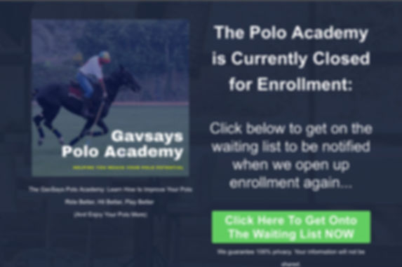 GavSays 2.jpg
