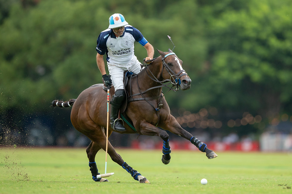 Adolfo Cambiaso playing in the Ainsley MVP saddles in the Argentine Open 2019