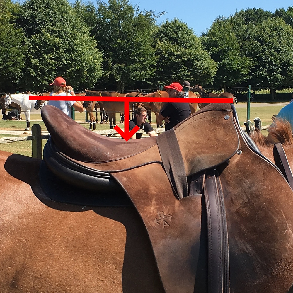 MVP polo saddle level seat