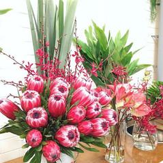 Proteas Flower Display
