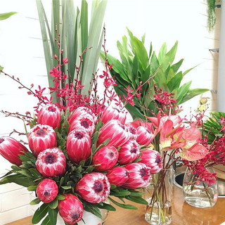 Proteas Flower Display
