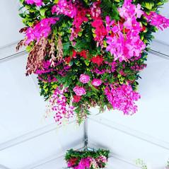 Hanging installations - Pinot Affair