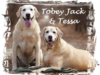 Tobey Jack is still fighting cancer