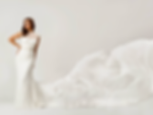 wedding dresses gowns melbourne rose-zurzolo.jpg