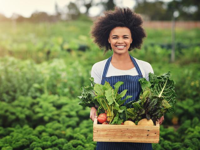 veggie farm_iStock-1078447204.jpg