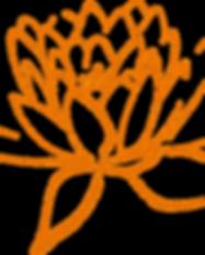 lotus-308947_1280.png