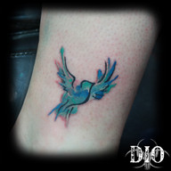small bird watercolor.jpg