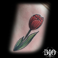 red tulip on torso.jpg