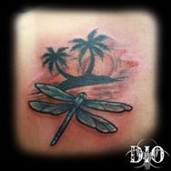 dragonfly island sunset.jpg
